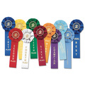 Stock Swimming Rosette