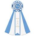 Royston Horse Show Rosette