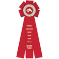 Windsor Horse Show Rosette Award Ribbon