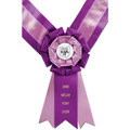 Easton Award Sash