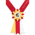 Diplomat Award Sash
