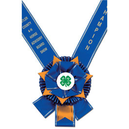 York Award Sash