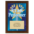 Star Performer Award Plaque - Cherry Finish