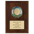 CEM Sports Award Medal Plaques