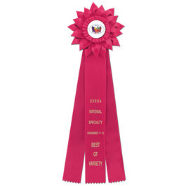 Sunburst Rosette Award Ribbon