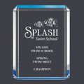 Blue Shimmer Swimming Acrylic Award Trophy
