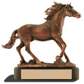 Stallion Trophy