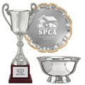 silver-award-trophies