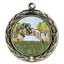 HBXC Award Medal