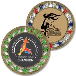 RSG Full Color Award Medals