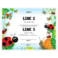 Custom Award Certificates - Lady Bug Design