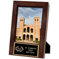 Espresso Hard Wood Award Frame
