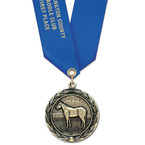 HBX Award Medal w/ Satin Neck Ribbon