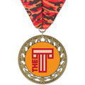 RS14 Award Medal w/ Millennium Neck Ribbon