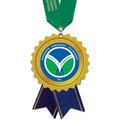 Birchwood Rosette Award Medal w/ Satin Neck Ribbon