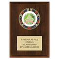RSG Award Medal Plaque - Cherry Finish