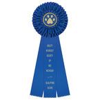 Regent Rosette Award Ribbon