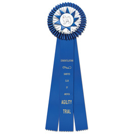 Chatham Rosette Award Ribbon