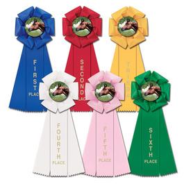 Stock Beauty Rosette Award Ribbon