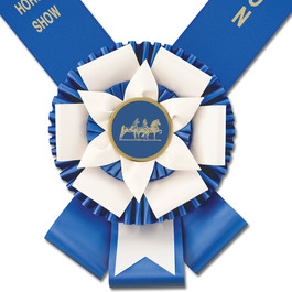Doncaster Award Sash