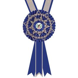 Thatcham Award Sash