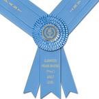 Radstock Award Sash