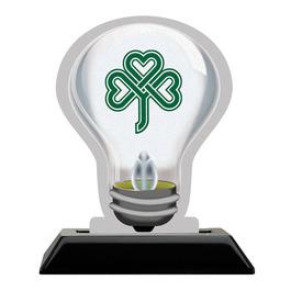 Birchwood Light Bulb Award Trophy w/ Black Base