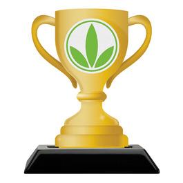 Birchwood Loving Cup Award Trophy w/ Black Base