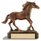 Stallion Trophy