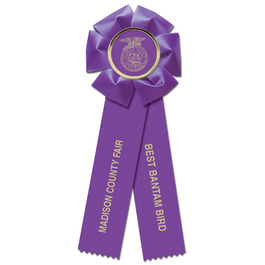Beauty 2 Rosette Award Ribbon