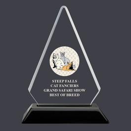 Arrowhead Acrylic Cat Show Award Trophy
