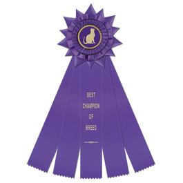 Finchley Cat Show Rosette Award Ribbon