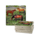 Horses in Field Tumbled Stone Coasters