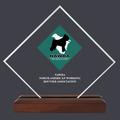 Diamond Acrylic Dog Show Award Trophy w/ Walnut Base