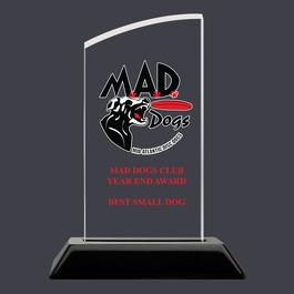 Swatch Acrylic Dog Show Award Trophy