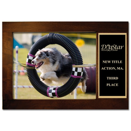 Espresso Hard Wood Dog Show Award Frame