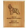 Engraved Solid Red Alder Dog Show Award Plaque
