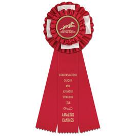 Birmingham Dog Show Rosette Award Ribbon