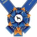 York Dog Show Award Sash