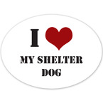 Oval Dog Show Window Decal