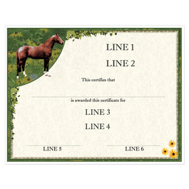 Custom Full Color Horse Show Award Certificate - Full Horse Design