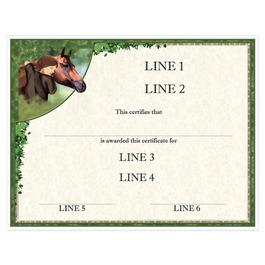 Custom Full Color Horse Show Award Certificate - Horse & Child Design