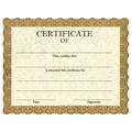 Stock Certificates - Classic Gold Design