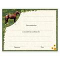 In-Stock Full Color Horse Show Award Certificate - Full Horse Design