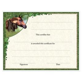 In-Stock Full Color Horse Show Award Certificate - Horse & Child Design