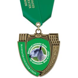 MS14 Mega Shield Fair, Festival & 4-H Award Medal w/ Satin Neck Ribbon