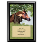 Horse and Child Fair, Festival & 4-H Award Plaque - Black Finish