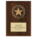 Rising Star Fair, Festival & 4-H Medal Award Plaque - Cherry Finish