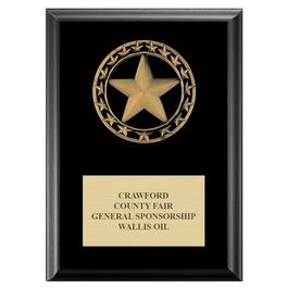 Rising Star Fair, Festival & 4-H Medal Award Plaque - Black Finish