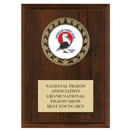RS14 Fair, Festival & 4-H Medal Award Plaque - Cherry Finish